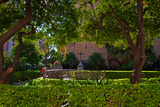 Garden Outside Malaga´S Cathedral, Malaga City, Andalucia, Spain Photographic Print by Green Light Collection