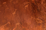 Cave Paintings by Bushmen, Damaraland, Namibia Photographic Print by Green Light Collection