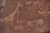 Cave Paintings by Bushmen, Damaraland, Namibia Fotografisk tryk af Green Light Collection