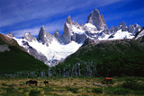 Peaks of the Fitz Roy Mountains Photographic Print by Tommy Heinrich