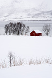 A Lone Red House in a Snowy Winter Landscape Reproduction photographique par Sergio Pitamitz