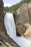 Lower Yellowstone Falls Cascades over Steep Cliffs Photographic Print by Stacy Gold