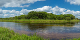 Myakka River in Myakka River State Park, Sarasota, Florida, Usa Photographic Print by Panoramic Images