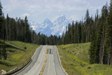 A Highway Leads Through the Forest in Grand Teton National Park Photographic Print by Stacy Gold