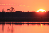 A Golden Sunset over the Chesapeake Bay and Coastal Forests Photographic Print by Robbie George
