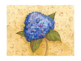 Hydrangea Love II Prints by Wendy Russell