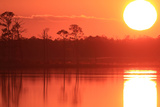 A Fiery Sunset with a Molten Hot Sun over the Chesapeake Bay and Coastal Forests Photographic Print by Robbie George