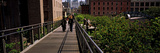 Tourists Walking in a Park, High Line Park, Manhattan, New York City, New York State, Usa Photographic Print by Panoramic Images