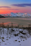 The Sun Sets over a Fjord and Winter Landscape Fotografisk tryk af Babak Tafreshi