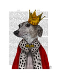 Greyhound Queen Premium Giclee Print by  Fab Funky