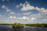 Mangroves and Clouds Cover the Horizon in Tarpon Bay, Near the Lower Shark River Photographic Print by Carlton Ward