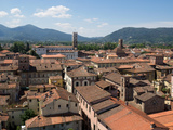 View of Buildings from Top of Torre Guinigi, Lucca, Tuscany, Italy Photographic Print by Green Light Collection