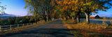 Vermont Country Road in Autumn Photographic Print by Panoramic Images