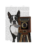 Boston Terrier Photographer Premium Giclee Print by  Fab Funky