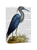 Blue Heron 2 Poster by  Fab Funky