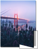 Foggy Golden Gate Bridge and Wildflowers, San Francisco Posters by Vincent James
