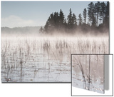 Mist Rises Off Lake of the Woods at Dawn Prints by Gabby Salazar