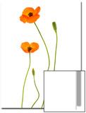 Oriental Poppy Flowers, Flower Buds and Seed Pod, Papaver Orientale Prints by Robert Llewellyn