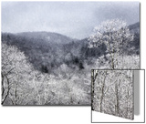 A Snow Fall over Trees and Mountains Creates an Impressionistic Winter Landscape Prints by Amy White Al Petteway