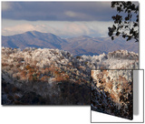 A Mountain Ridge Is Frosted with Rime Ice and Snow in Late Autumn Posters by Amy White Al Petteway