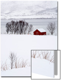 A Lone Red House in a Snowy Winter Landscape Prints by Sergio Pitamitz