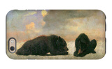 Grizzly Bears iPhone 6 Case by Albert Bierstadt