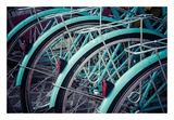 Bicycle Line Up 2 Posters by Jessica Reiss