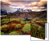 A Patagonia Scenic with the Andes Mountains, Scrub Vegetation, a Dead Tree, and Dramatic Clouds Plakat