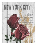 New York Roses Poster by Alicia Soave