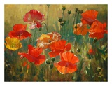 Poppy Fields Posters by Emma Styles