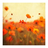 Orange Happiness Prints by Dawn D. Hanna
