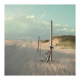 Biking on Ocracoke Prints by Dawn D. Hanna
