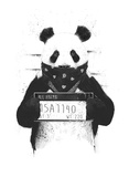 Bad Panda Prints by Balazs Solti