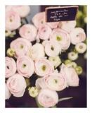 Marché aux fleurs Affiches par Irene Suchocki