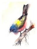 Bunting Bird Posters par  CanotStop