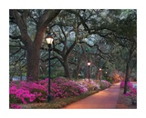 Forsythe Park Prints by Winthrope Hiers
