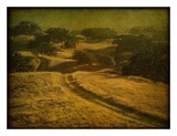 Ranch Road and Oak Savannah Print by William Guion