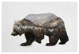 The Kodiak Brown Bear Prints by  Davies Babies