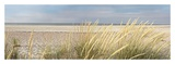 Island Sand Dunes Art by Alan Blaustein