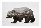 The Kodiak Brown Bear Poster by  Davies Babies