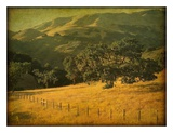 Oak and Fence Print by William Guion