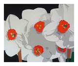 White Narcissus Posters by Susan Porter