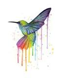 Rainbow Hummingbird Prints by Olga Shvartsur