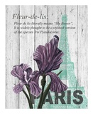 Paris Iris Prints by Alicia Soave