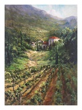 Tuscany Vineyard Prints by Art Fronckowiak