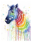 Rainbow Zebra Art by Olga Shvartsur