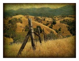 Weathered Ranch Fence Print by William Guion