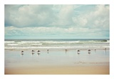 Beachcombing Prints by Irene Suchocki