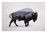 The American Bison Art by  Davies Babies