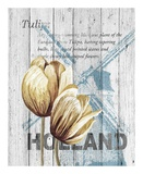 Holland Tulips Print by Alicia Soave